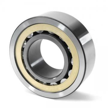 SL183011 INA Cylindrical Roller Bearing